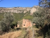 Ruïnes de Can Coll