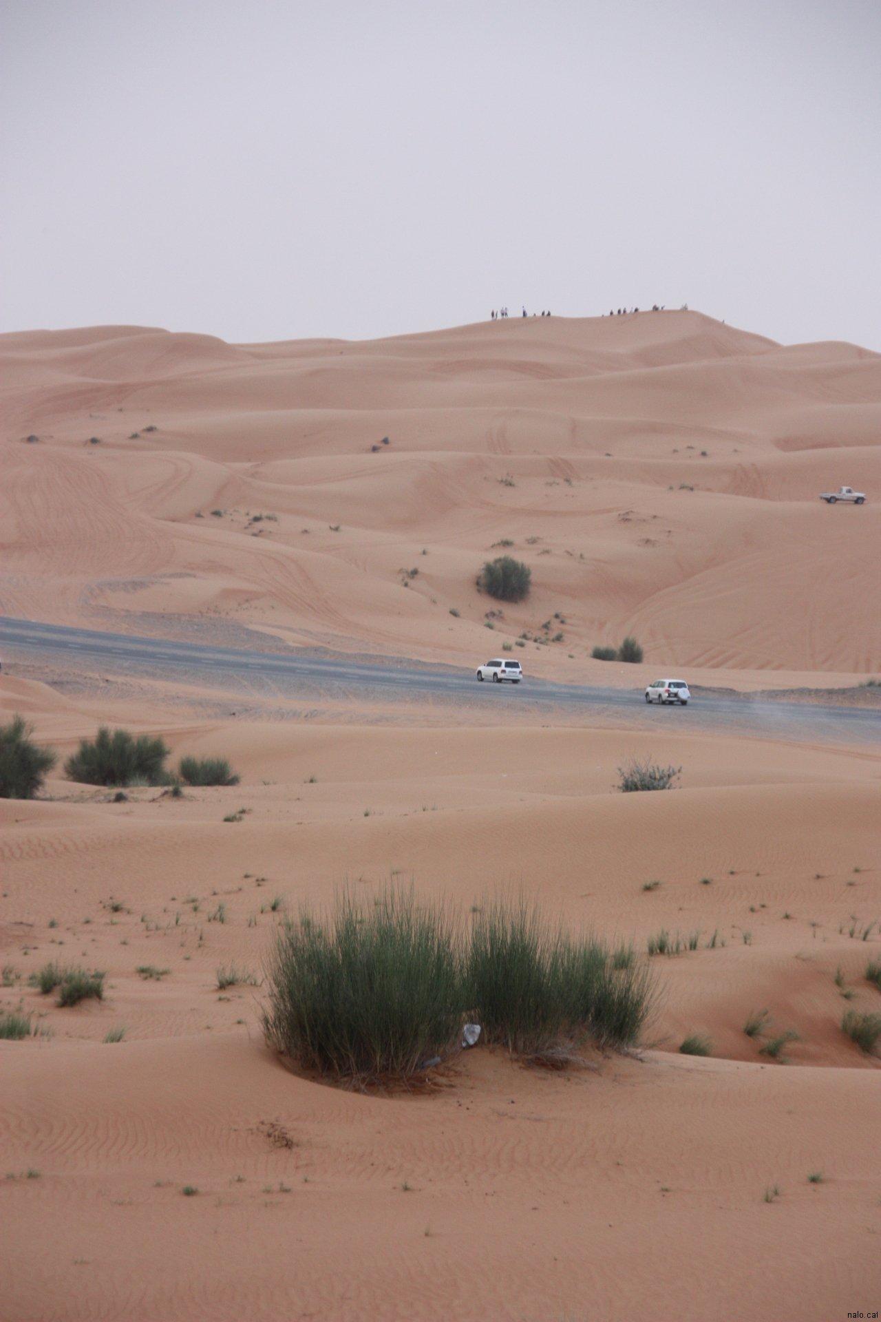 Carretera al mig del desert