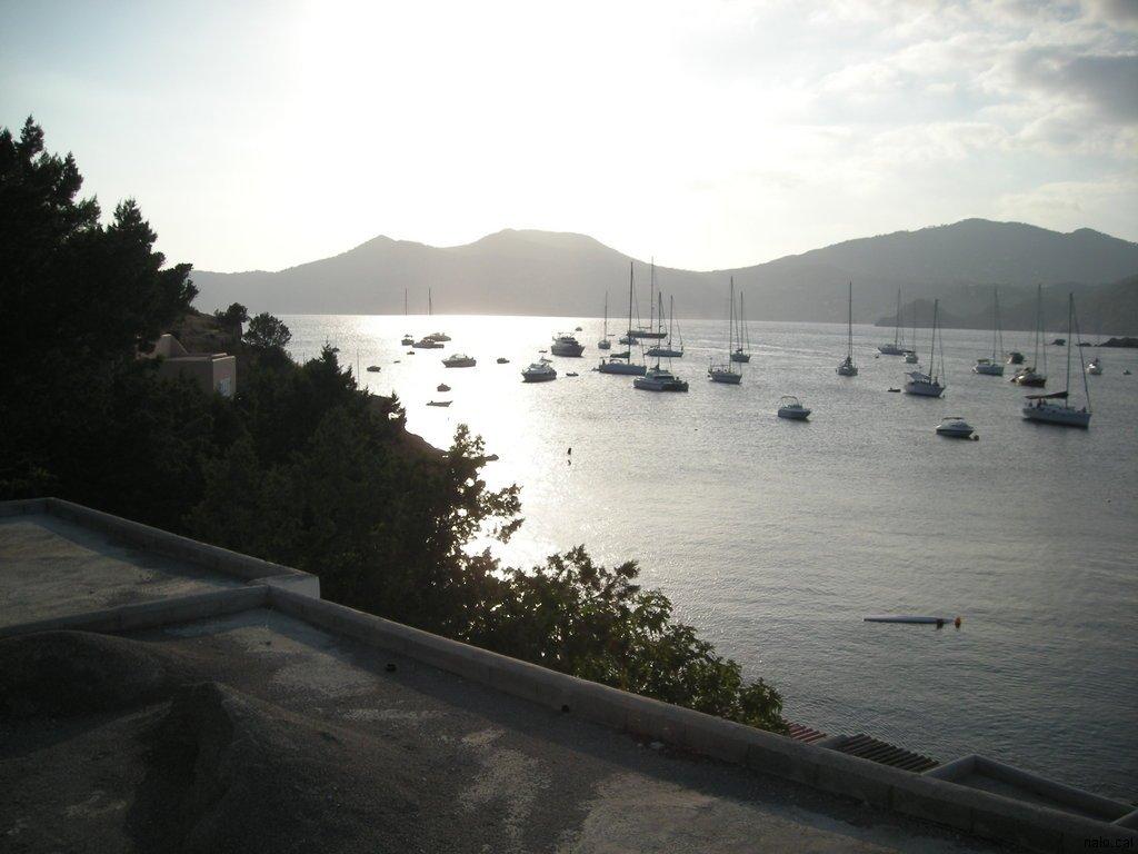 Vista des de la platja de Porroig